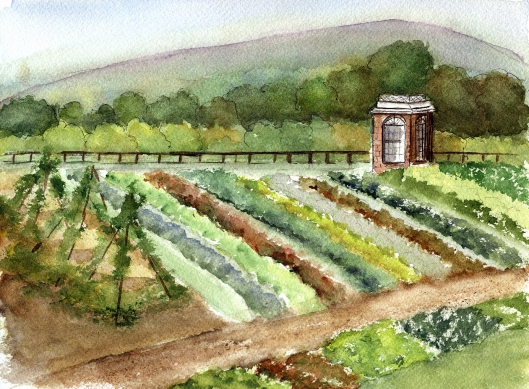 jeffersons-veg-garden2
